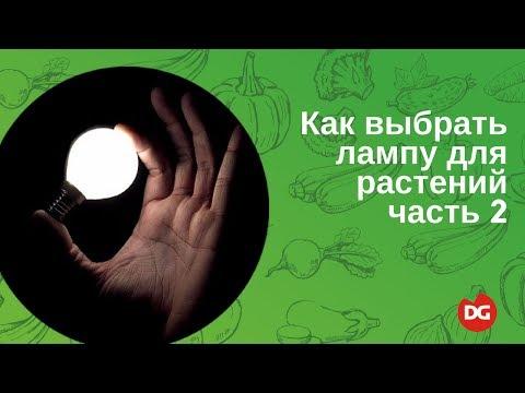 №12 Как выбрать лампу для растений. Часть 2