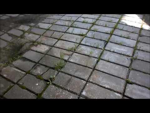 Как не надо укладывать тротуарную плитку