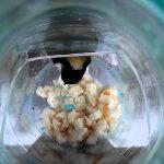 Как сделать кормушку для птиц из пластиковой бутылки? миниатюра