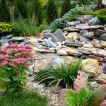Как выбрать растения для альпийской горки? Цветы для альпинария. миниатюра