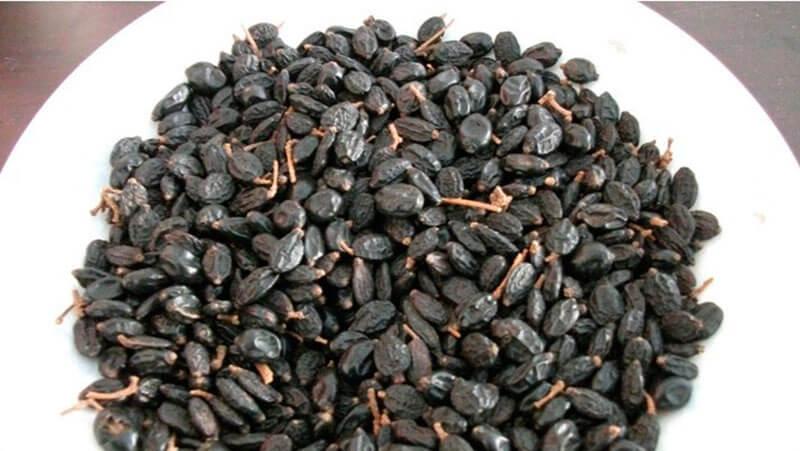 резмножение гортензии семенами