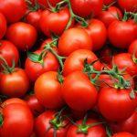 Лучшие сорта томатов: разновидности и характеристики. миниатюра