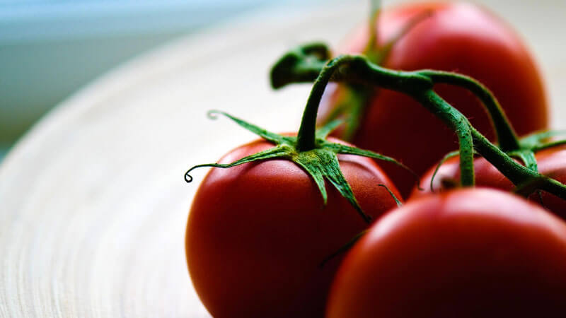 урожайные сорта томатов для теплиц
