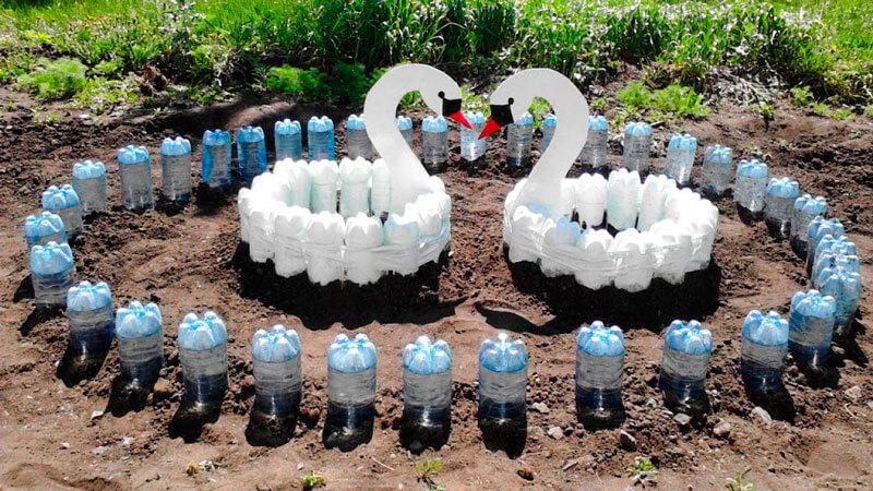 пластиковые бутылки на огороде