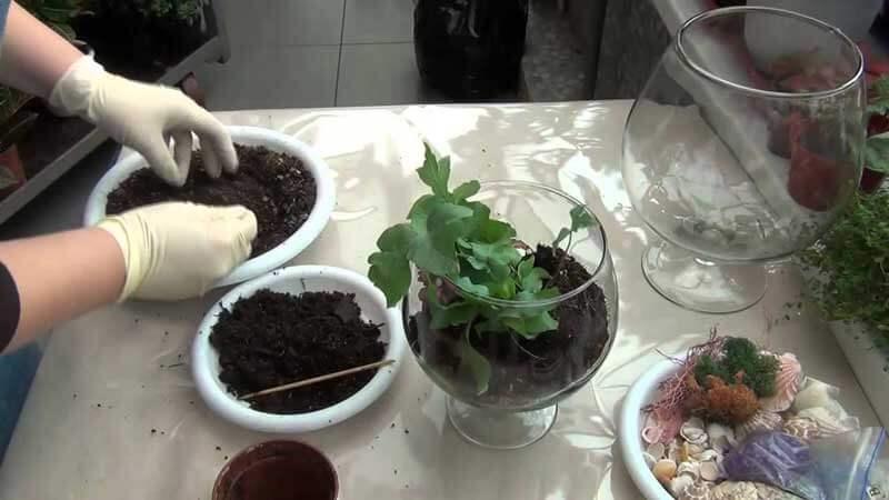 флорариумы с цветным песком